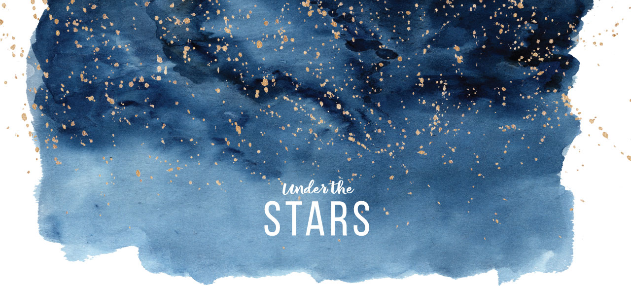 Founders Gala - Under the Stars